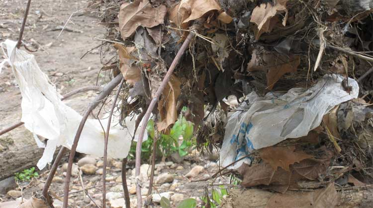 Plastic bags: Europe is closing the tap
