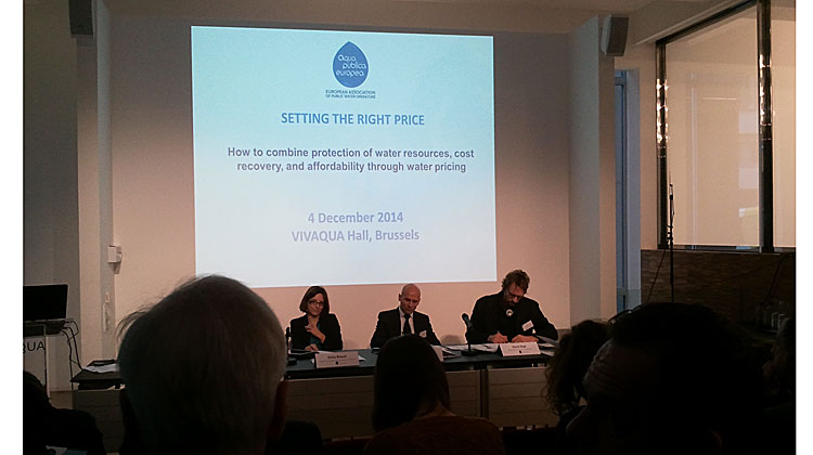 Setting the right water price challenges member states