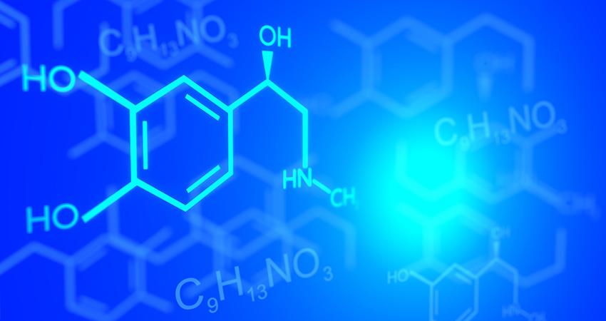 ECHA identifies 290 new chemicals of concern